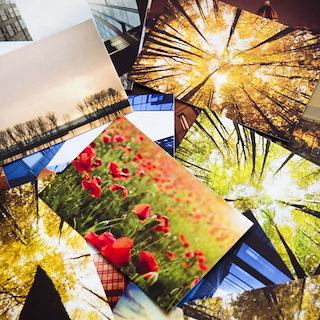 Custom Photo Imaging: quality photo prints, enlargements